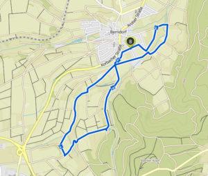 Berndorfer Volkslauf 7,5 Kilometer Nordic-Walking